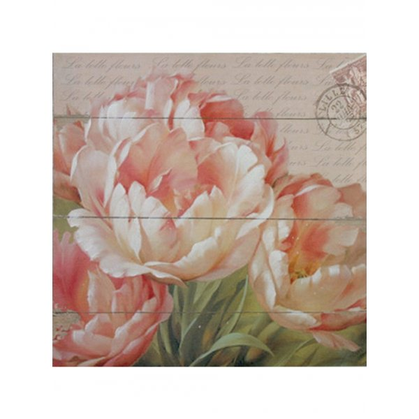 Canvas Print 28cm x 20cm - Pale Pink opened tulips