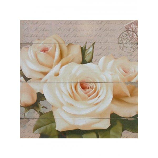 Canvas Print 40cm x 40cm - Cream roses