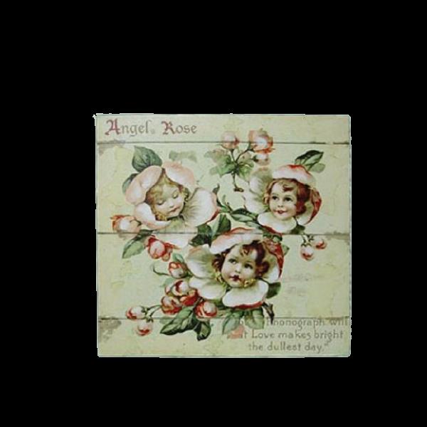 Canvas Print 24cm x 24cm - Angels in cream roses